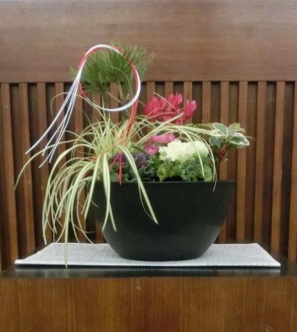 寄せ植え花